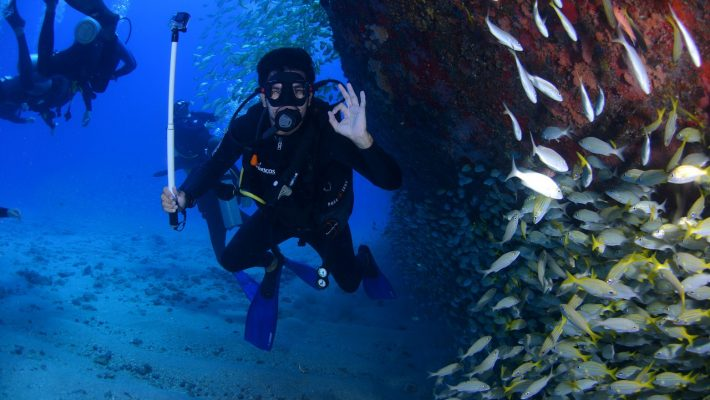 Explore the Sea World